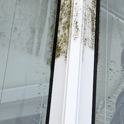 conservatory window needs cleaning in London